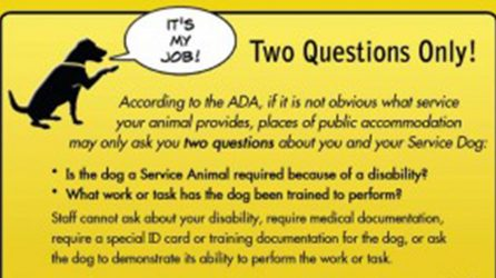 Service Dog Access Questions
