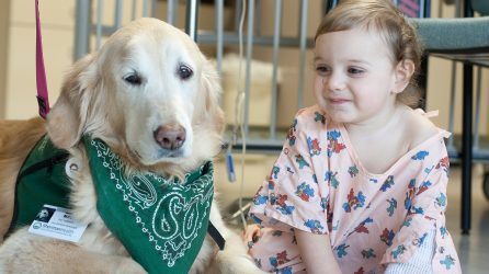 Therapy Dog at Sherman Hospital