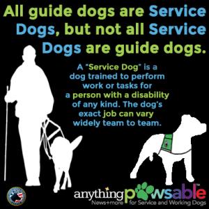 Service Dog Definition