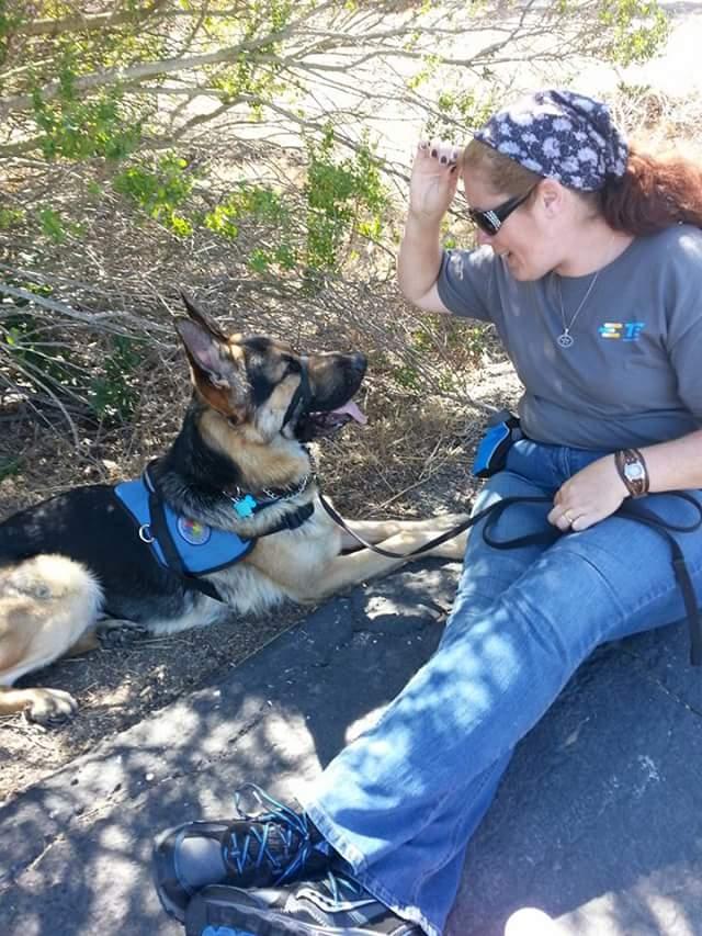Service Dog Behavior Autism Dog Focuses on Handler