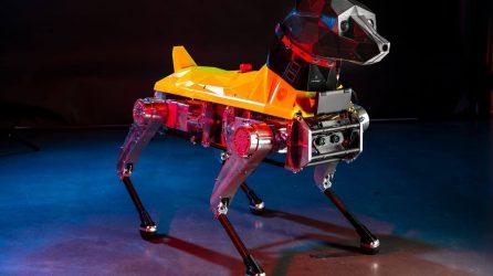 Astro Robot Dog