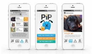 PiP Screenshot