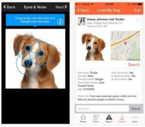 Finding Rover App Screenshot
