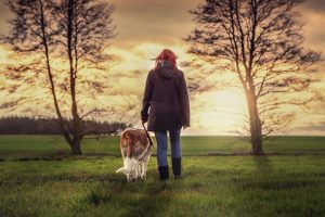 psychiatric service dog intervention tasks