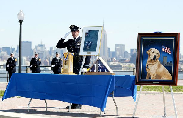 A NY-NJ Port Authority Police Officer salutes near a painting of Sirius, a K9 dog killed during the terrorist attack at the World Trade Center, during a memorial service at Liberty State Park April 24, 2002 in Jersey City ( Image: Don Murray/Getty Images)