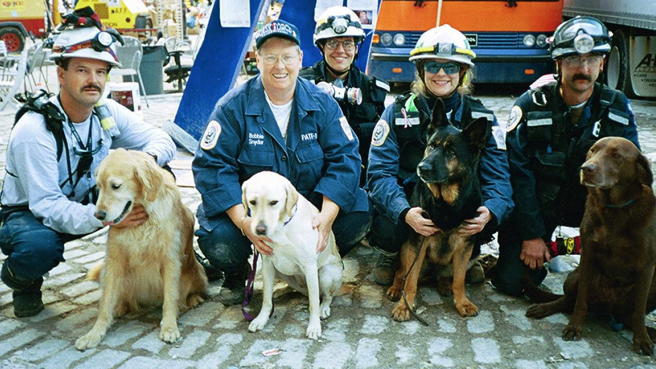 The canines and humans of Pennsylvania Task Force One at Ground Zero: (from left) Chris Selfridge and Riley, Bobbie Snyder and Willow, Cindy Otto, Rose DeLuca and Logan, and John Gilkey and Bear.